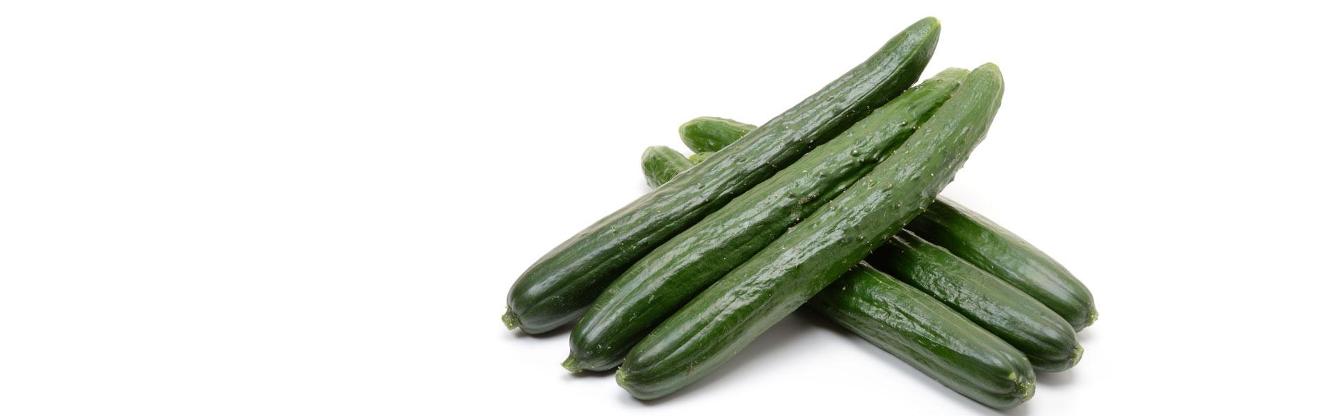 業務用野菜卸の丸川青果